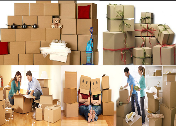 About Zodiac Packers Movers Profile